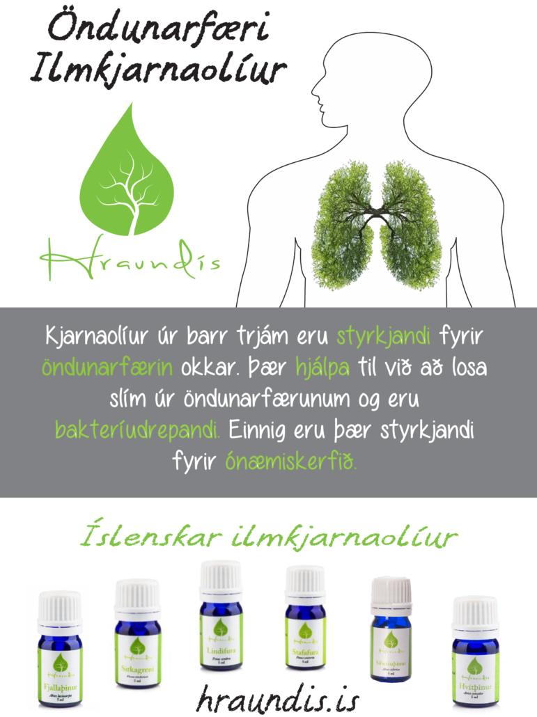 hraundis.is,Ilmkjarnaolíur, Kjarnaolíur, nudd, essential oils, lavender, heilsan, kvef, bað